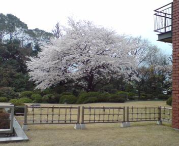 20080330102044.jpg