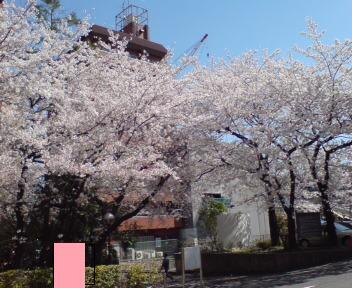 2008-04-01T17 25 59-bc1e4.jpg
