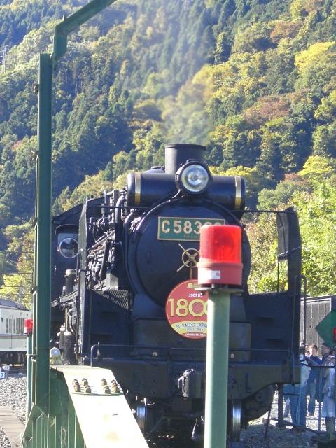 CIMG9609.JPG